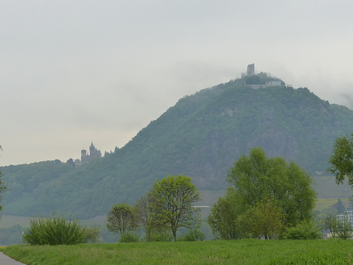 20140424_022rolandswerth.jpg