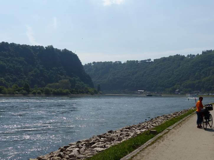 20140425_042loreley.jpg