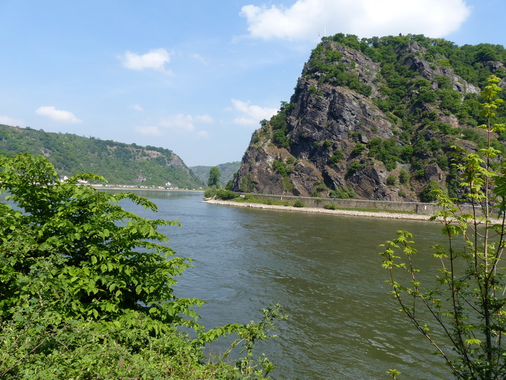 20140425_046loreley.jpg
