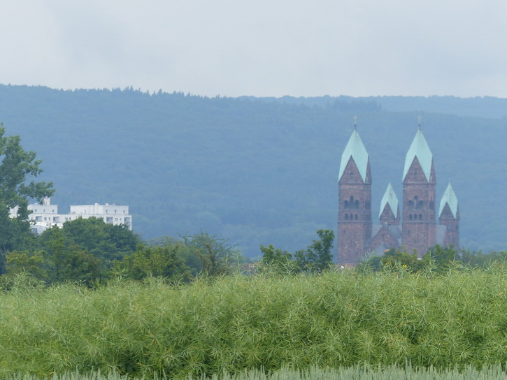 20140526_005bad_homburg.jpg
